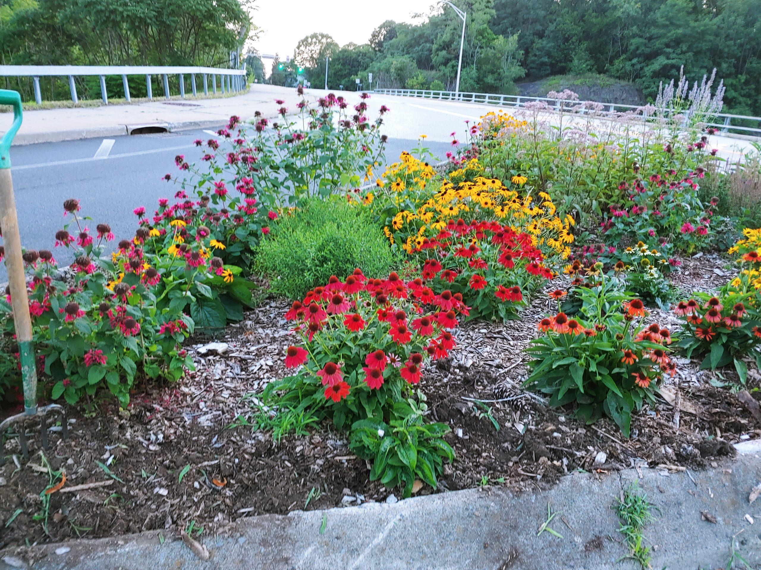 Del Ave Garden close July 25 2020